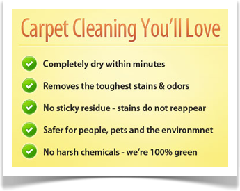 carpet cleaning you'll love longwood fl