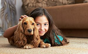 Olive's Dry Carpet Cleaning Madison Florida