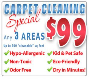 carpet cleaning special orlando fl