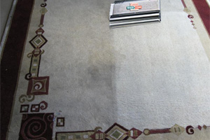 area rug cleaning - orlando - longwood